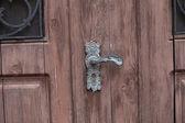 Fragment of  wood door with rusty door handle