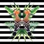 Tropical bird vector illustration...