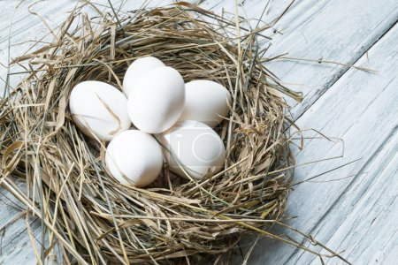 White chicken eggs in straw nest