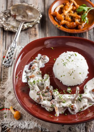 Beef Stroganoff with mushrooms and rice.