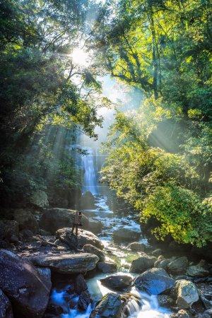 Photo pour Lever du soleil à Neidong belles chutes d'eau, Taiwan - image libre de droit