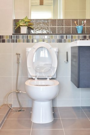 Water closet with hygienic hand spray in modern style toilet