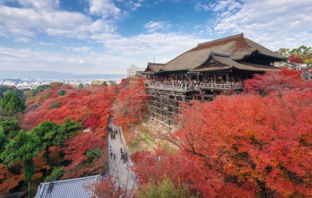 Red fall leaves at Kiyomizu-dera temple in Kyoto, Japan