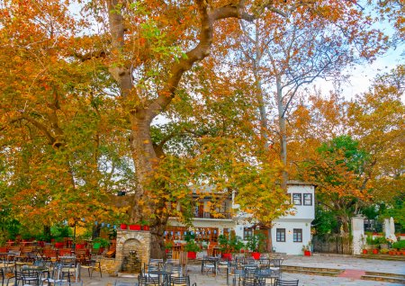 Beautiful square at Portaria village