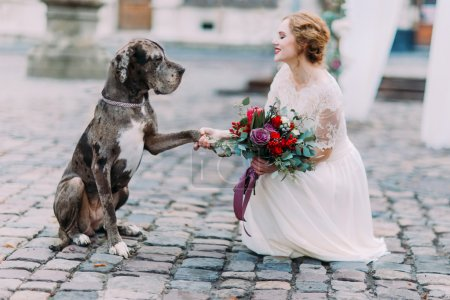 Nice big dog gives a pow to the gorgeous bride in the Lviv city center