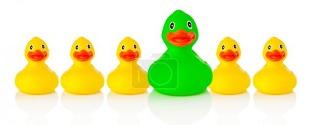 Photo for Green rubber duck in a row with yellow rubber ducks, white background - Royalty Free Image