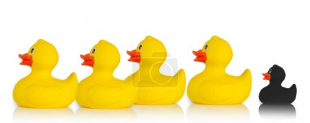 Black rubber duck excluded from the rest