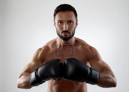Confident boxer on gray