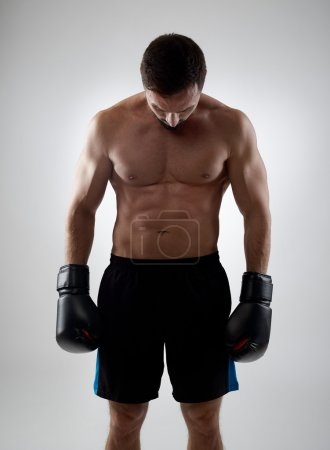 Photo for Defeated boxer looking down, gray background - Royalty Free Image