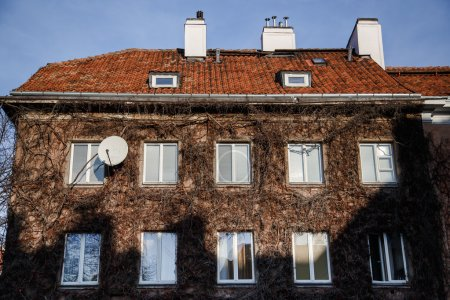 Overgrown house facade