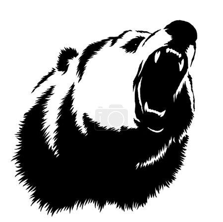Photo pour Noir et blanc graver dessin à l'encre ours illustration - image libre de droit