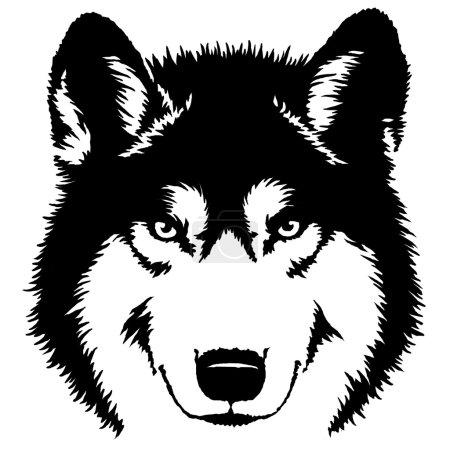 Photo pour Peinture linéaire noir et blanc dessiner loup illustration - image libre de droit