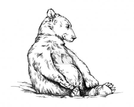 Illustration for Black and white engrave ink draw isolated vector grizzly bear - Royalty Free Image