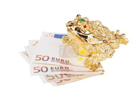Chinese money frog