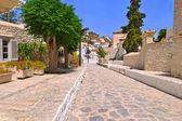 Hydra island Saronic gulf Greece