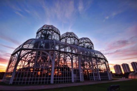 Bothanical Garden, Curitiba, Brazil.