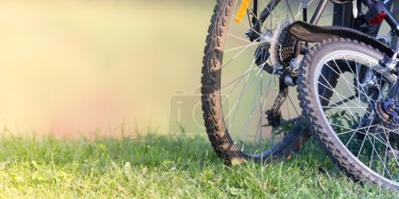 Photo for Mountain bikes on the grass outdoor - Royalty Free Image