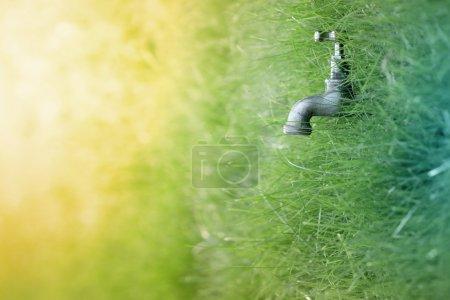 Photo pour Eau, nature et concepts de vie - image libre de droit