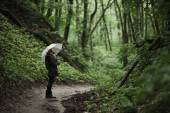 Young girl walking through a rainy forest with umbrella.