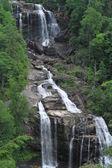 Majestic Whitewater Falls