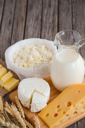 Fresh dairy products. Milk, cheese, butter and cottage cheese with wheat on the rustic wooden background.