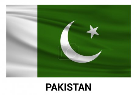 Pakistan flag in official colors