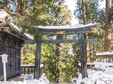 Torii gate in Toshogu shrine, Nikko