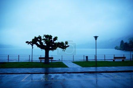 Photo pour Jour de pluie au lac Brienz dans le district d'Interlaken, canton de Berne, Suisse . - image libre de droit