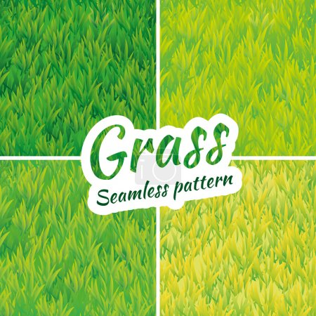 Illustration for Summer green grass texture. Summer pattern background. Summer banner. Grass texture background. Grass seamless pattern vector for design. Green grass seamless pattern web, card, banner, spring, summer - Royalty Free Image