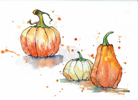 Three pumpkins in orange tones on a white background.