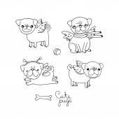 Cute Pugs Dogs