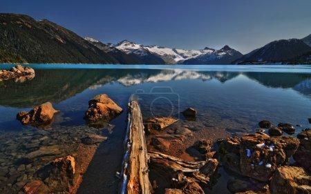 Sunken logs in mountain lake