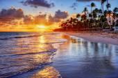 Přímořské letovisko s palmami