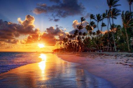 Photo pour Brillant lever de soleil sur la plage océanique avec des palmiers - image libre de droit