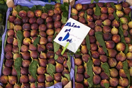 Fresh figs in boxes