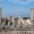 Ancient temple of Apollo in antique city of Didyma...