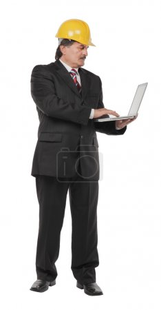Mature businessman with laptop