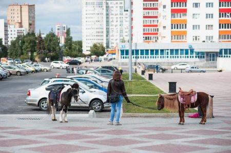 Photo pour 2 poneys attendent les jeunes coureurs dans le parc sur un fond de paysage urbain. Stationnement sur le fond. Berger, tenant de la patte d'oie - image libre de droit