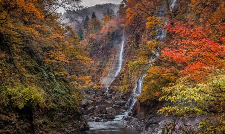 Photo for Early Morning Autumnal Landscape in picturesque mountains - Royalty Free Image
