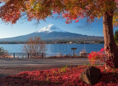 Mountain Fuji and autumn foliage