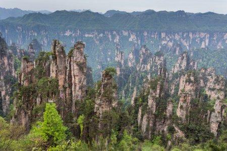 Avatar mountains of Zhangjiajie