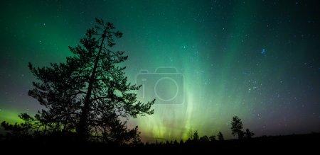 Photo pour Superbe vue des aurores boréales dans le ciel nocturne - image libre de droit
