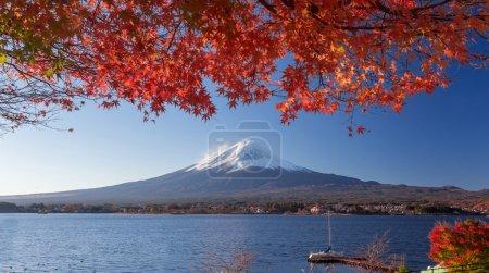 Photo for Mountain Fuji and autumn foliage at Lake Kawaguchi, Japan - Royalty Free Image