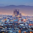 Picturesque aerial view of Barcelona city in Spain...