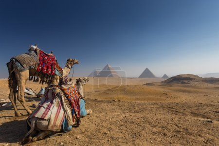 Picturesque view of famous pyramids, Cairo - Giza,...