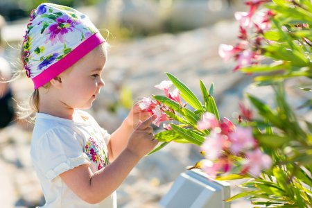 The little girl touches the flowers of the bougainvillea in Cyprus
