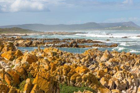 Beautiful landscape in Cape Agulhas