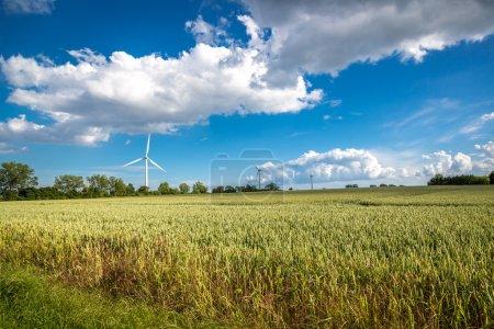 Wind turbine in large green field