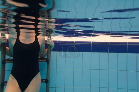 Female torso in the swimming pool