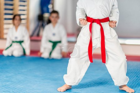 Taekwondo kid  in fighting stance